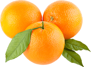 Navel Orange(MALTA)
